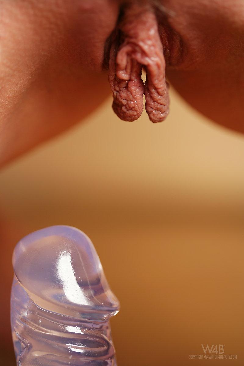 Mariana evans desnuda