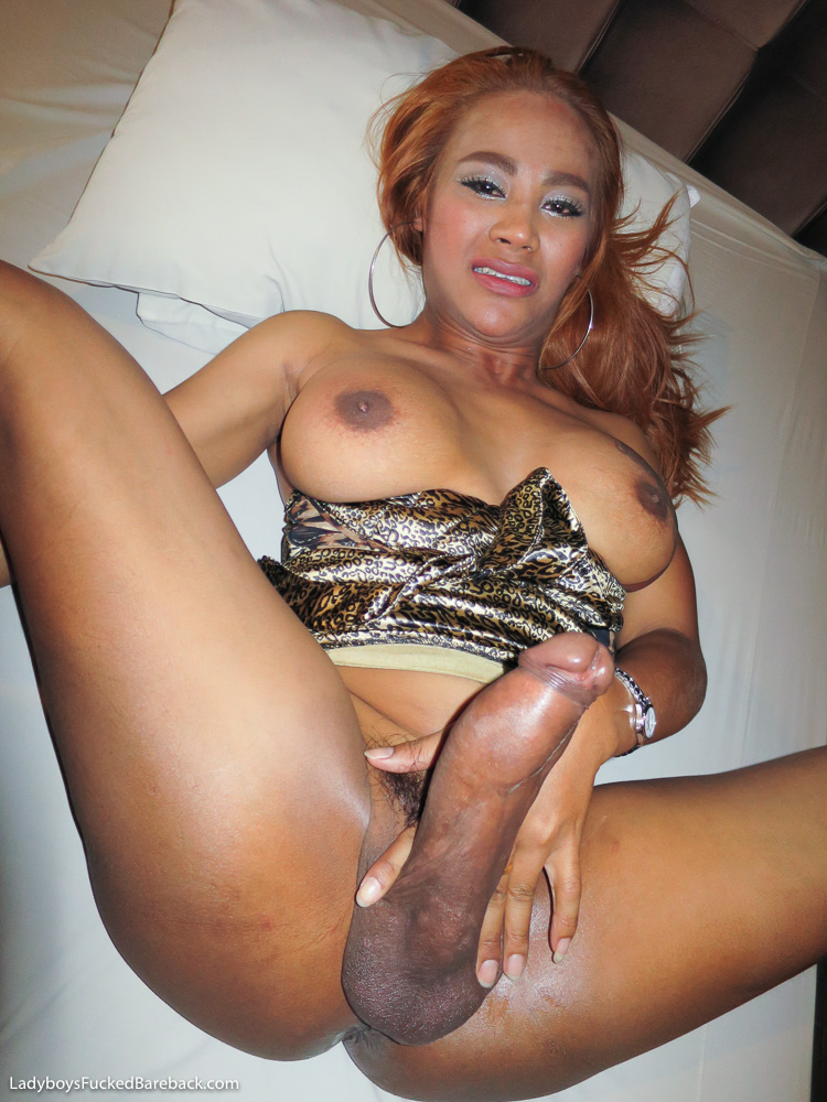 galleries-young-tranny-blogs