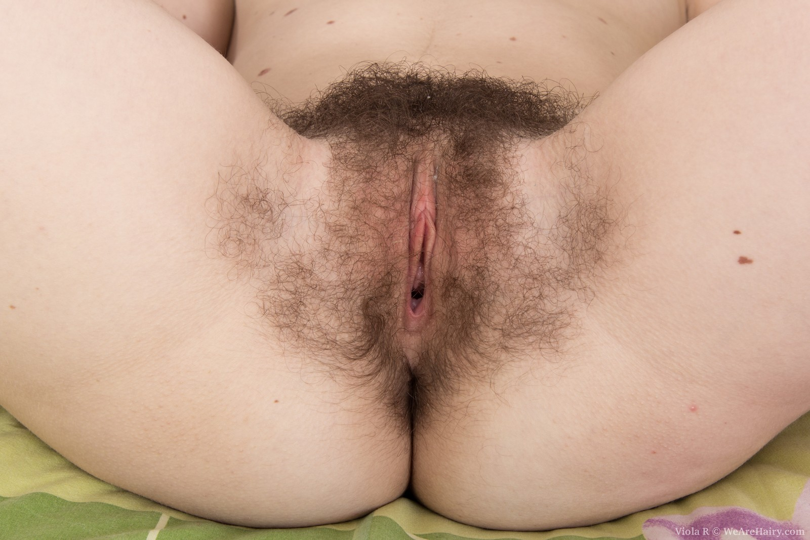 Hairy cunt closeups